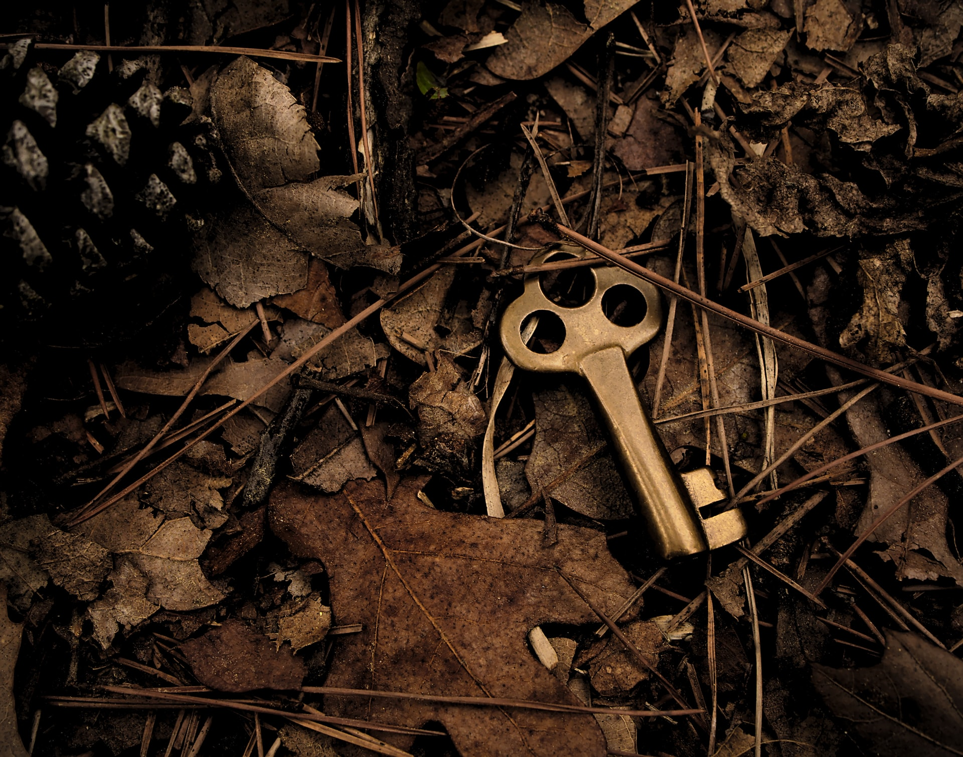 Kleiner Schlüssel im Laub, fast verschwindend